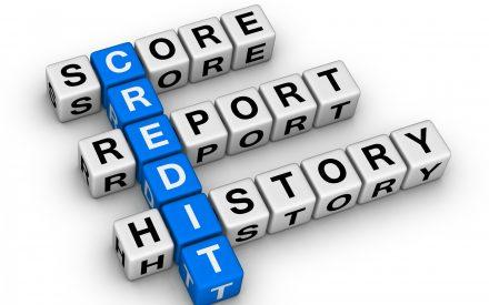 Credit rpeort history puzzle
